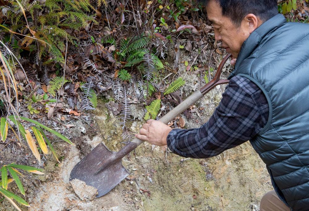 Ichino examining the quality of the soil next to his house. ©TOKI