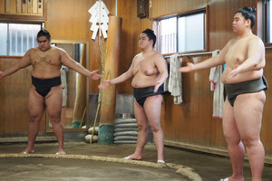 INTERACT AND HAVE LUNCH WITH SUMO WRESTLERS AT A SUMO STABLE While closed off to the regular public, we have obtained access and would like to invite you to visit the training room of Japan's popular sumo wrestlers.