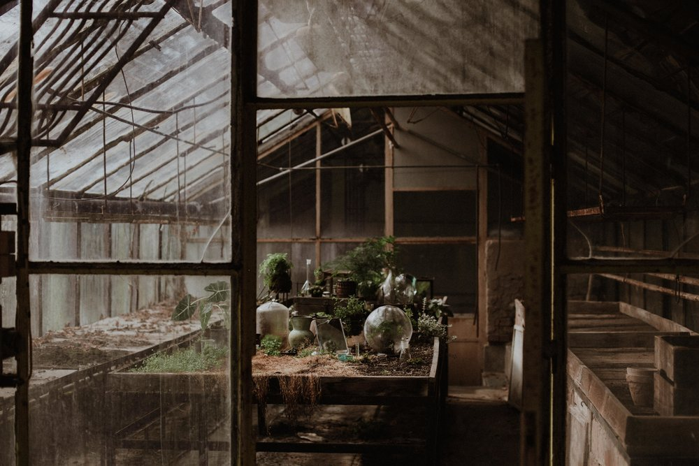 Greenhouse - STYLED SHOOT