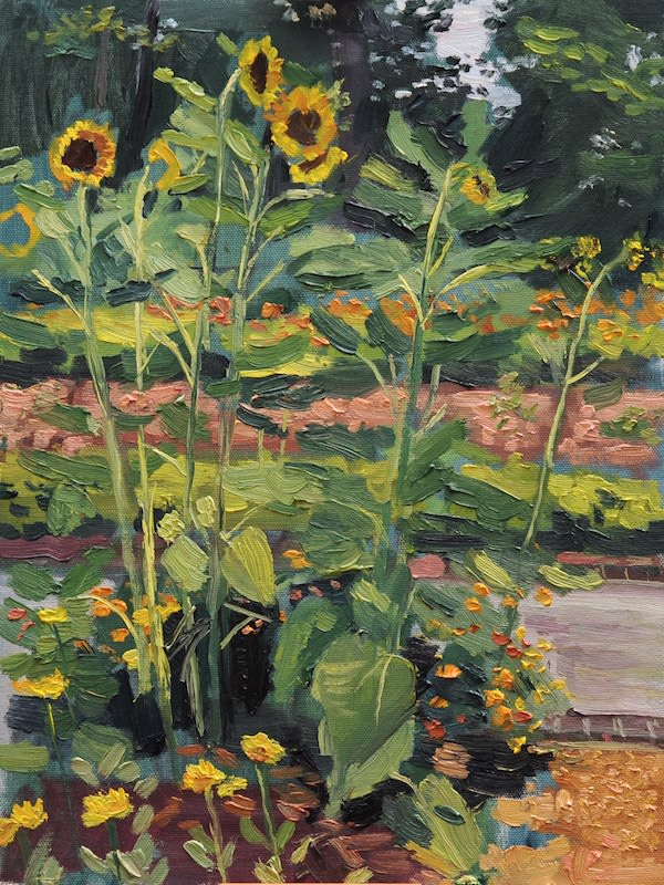 Sunflowers at the Dixon