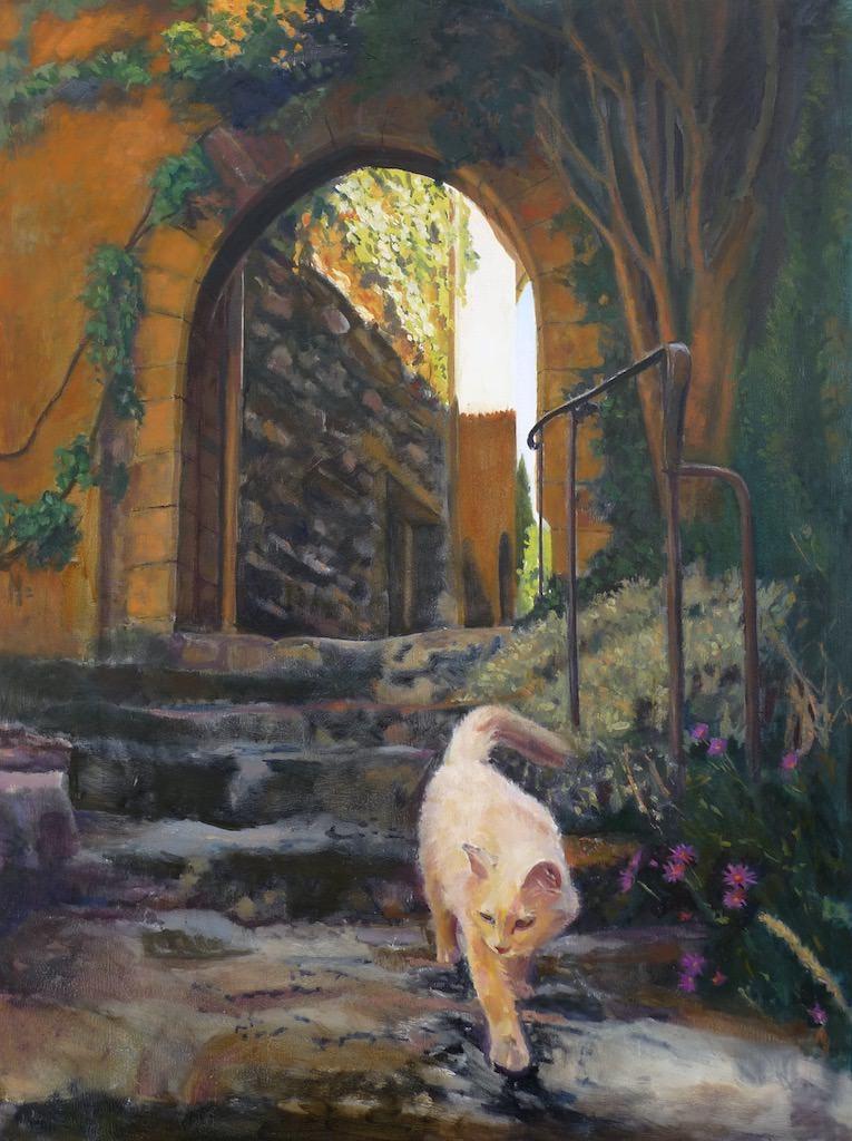 Chat Blanc de Provence