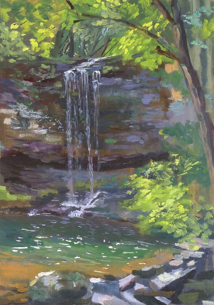 Falls in Georgia 10 x 16 inches
