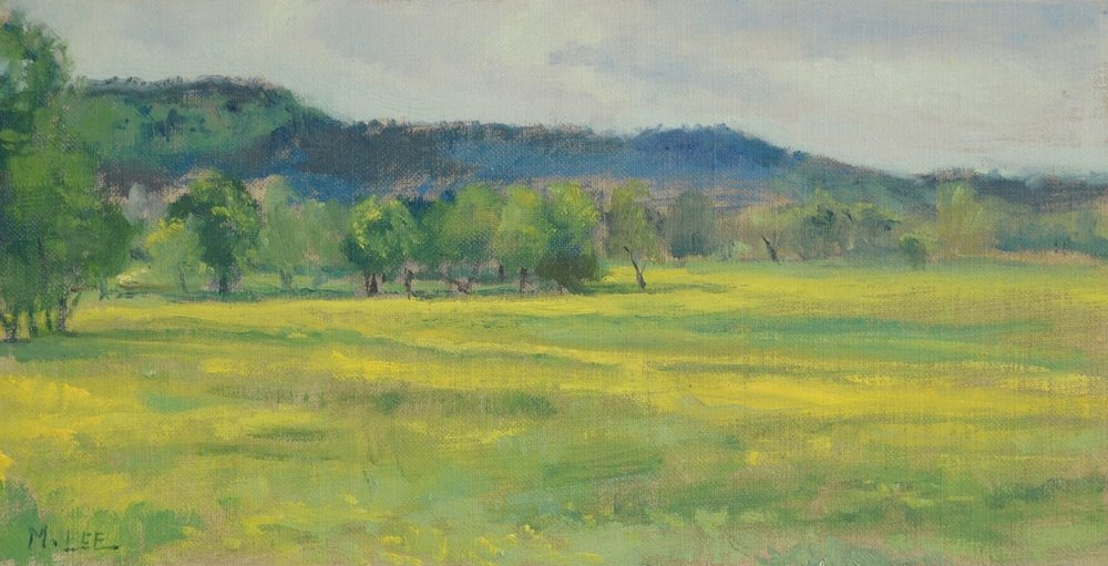 Yellow flowering fields near the Ozark National Forest, AR.  6x12 inches, oil on linen.