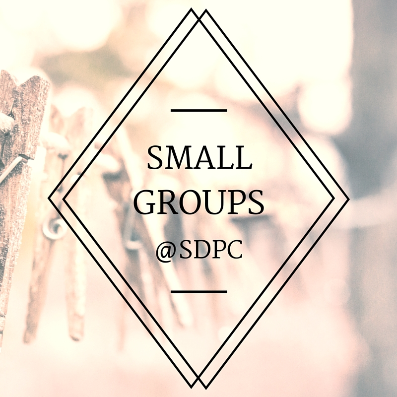 Small Groups at SDPC