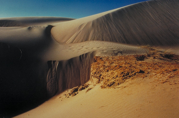 Oregon Sand