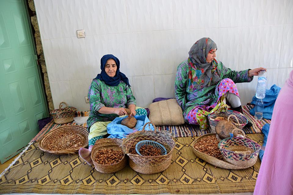 Moças na cooperativa: escolhendo as sementes para secar