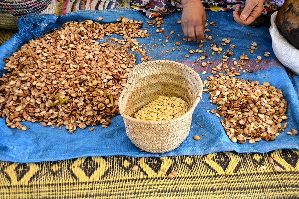Amêndoas que acabaram de ser tiradas da semente e que servirão para o óleo como cosmético