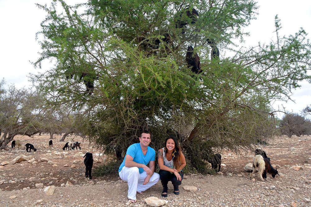 Cabras na árvore e eu turistando haha