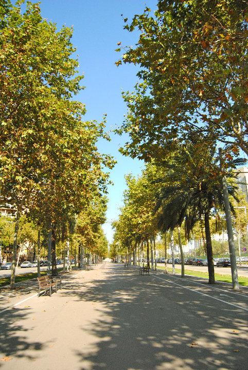 avenidadiagonal