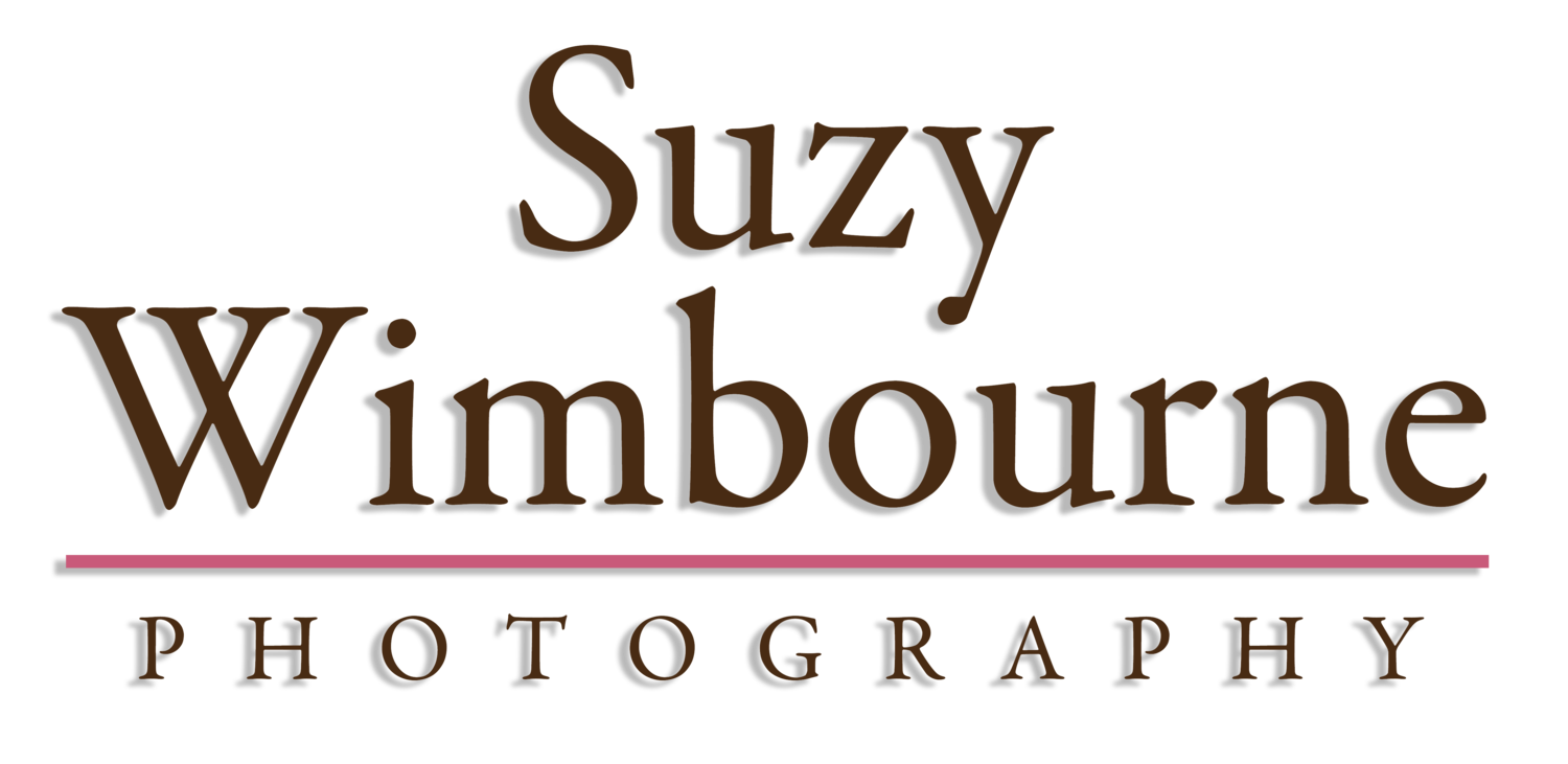 Suzy Wimbourne Photography