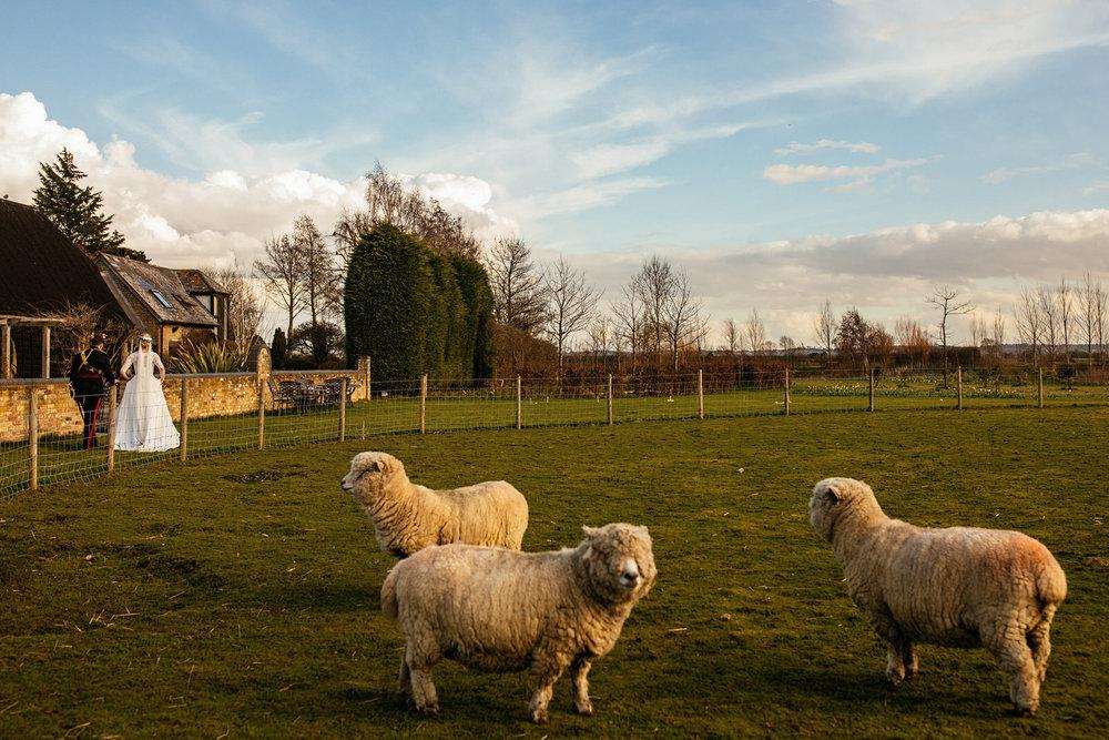 South-Farm-Wedding-Photographer-53.jpg