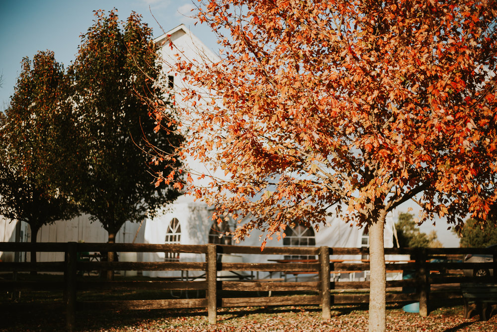 Red Orchard Barn Wedding