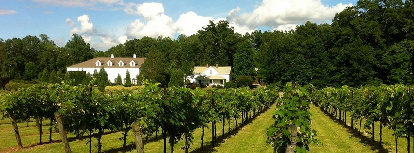 Stonefield Cellars Winery is located in Stokesdale and is producing some of our favorite North Carolina wines!