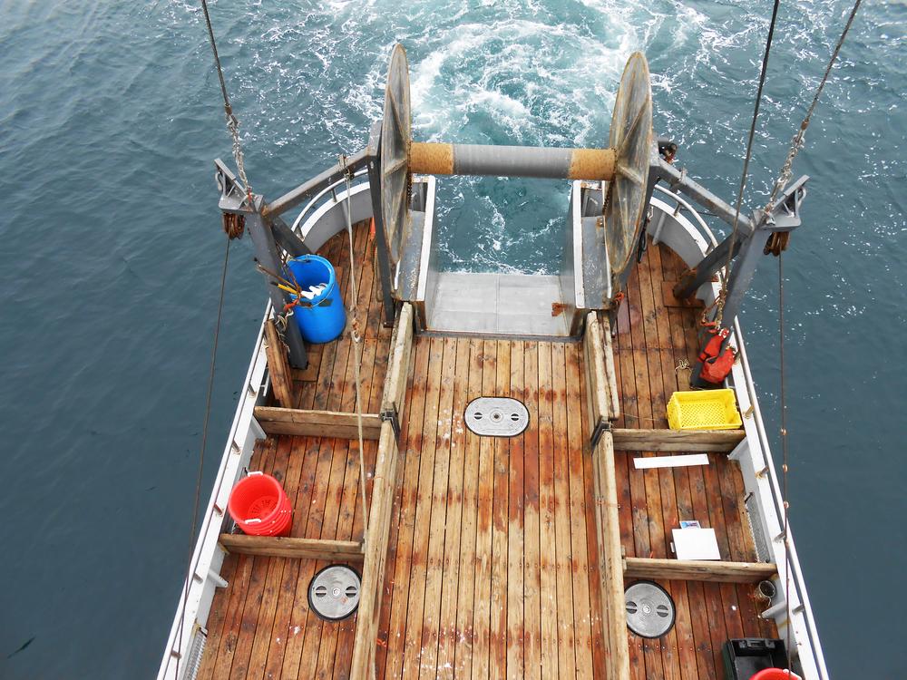 Deck-4.jpg