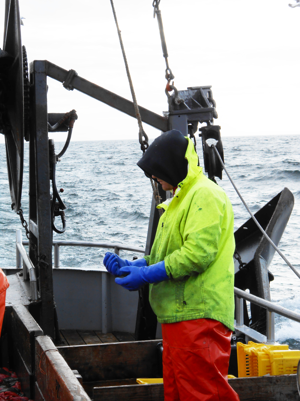 Fisherman-1.jpg
