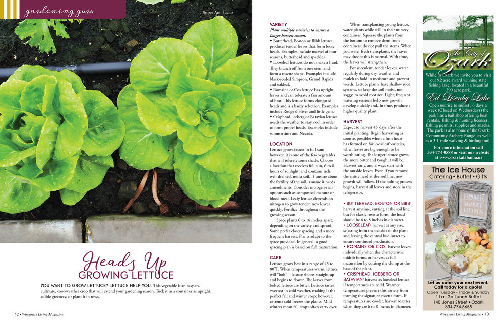 Gardening Guru,  Wiregrass Living Magazine , September/October 2016