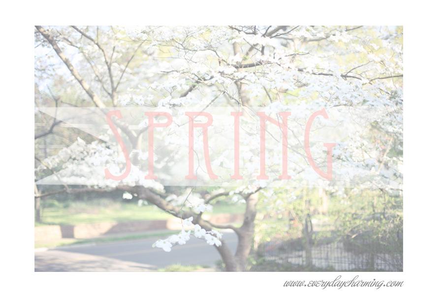 blog post SPRING3