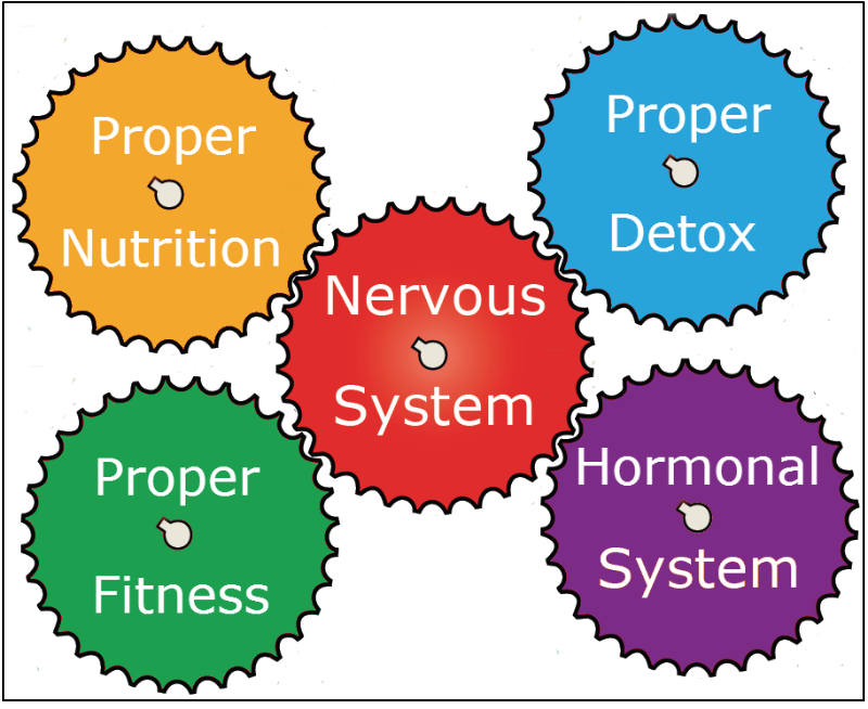 Comprehensive Approach To improve your entire health!