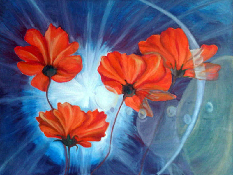 orange cosmos by salome