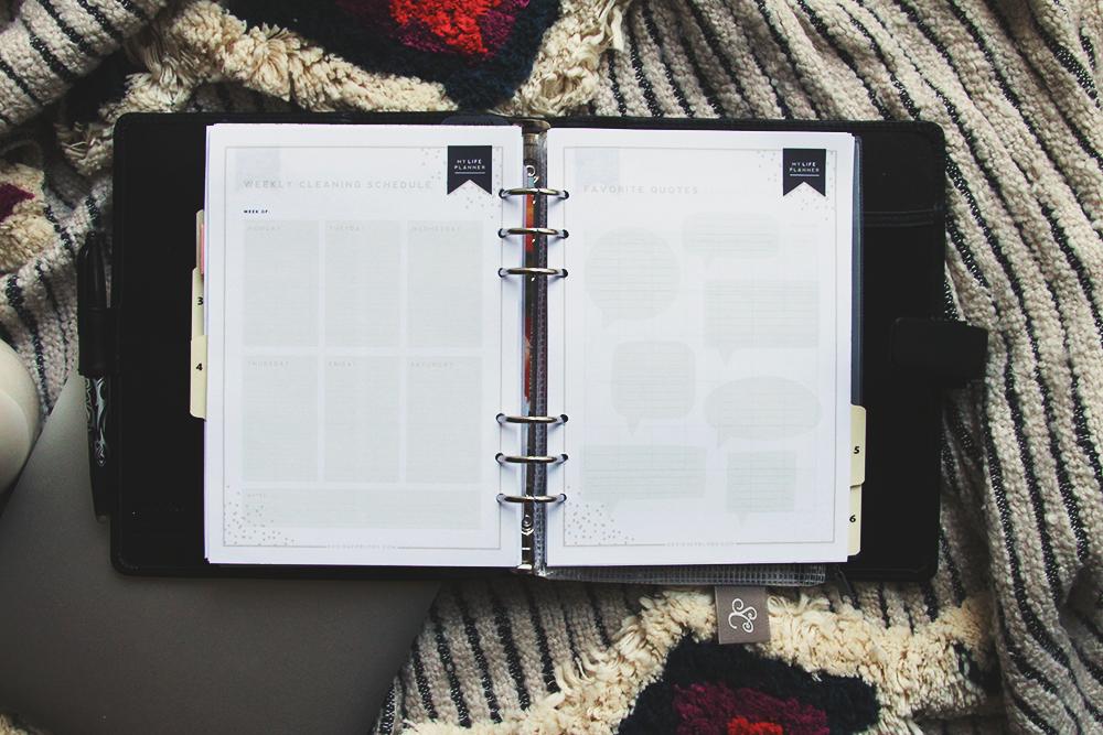 Filofax planner Celine Navarro 25.jpg