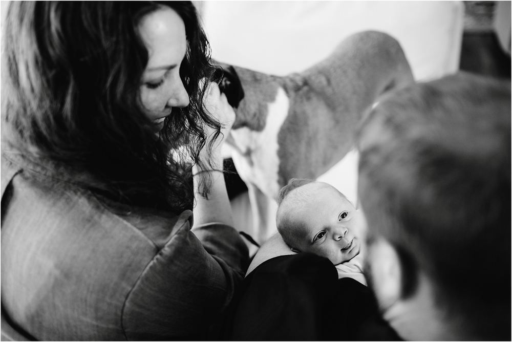 Baby Photos | Easton Family Photographer | Dani Dietz Photography