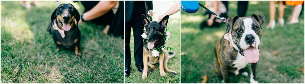 Philadelphia Wedding Photographer_0035.jpg