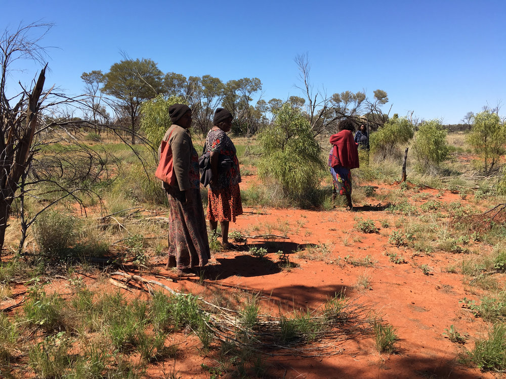 (L-R): Colleen Ngwarraye Morton, Rosie Ngwarraye Ross, Margaret Kemarre Ross and Beverly Pula Luck searching for bush medicine. Image courtesy  Lara Damiani .