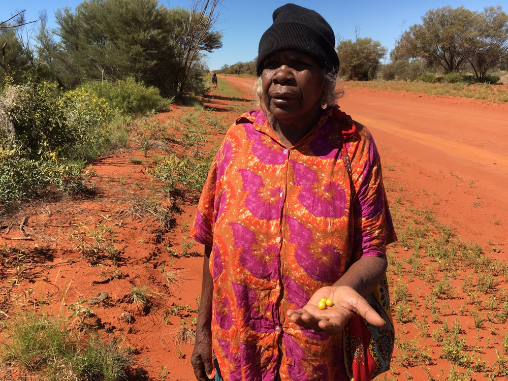 Artist Daisy Kemarre Moss with some traditional bush food / berries. Image courtesy  Lara Damiani