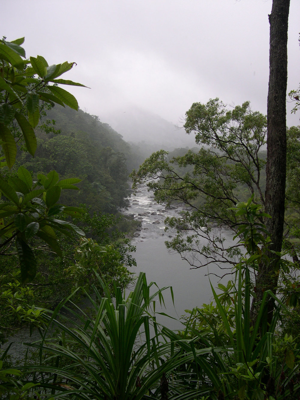 The Tully River, Girrigun in Far North Queensland. Photo courtesy Valerie Keenan.