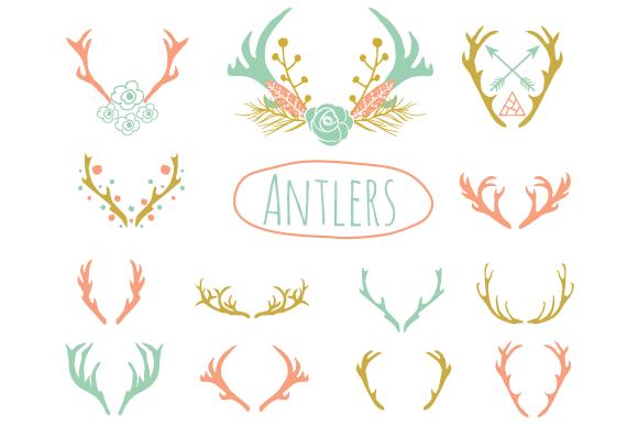 WILD ANTLERS