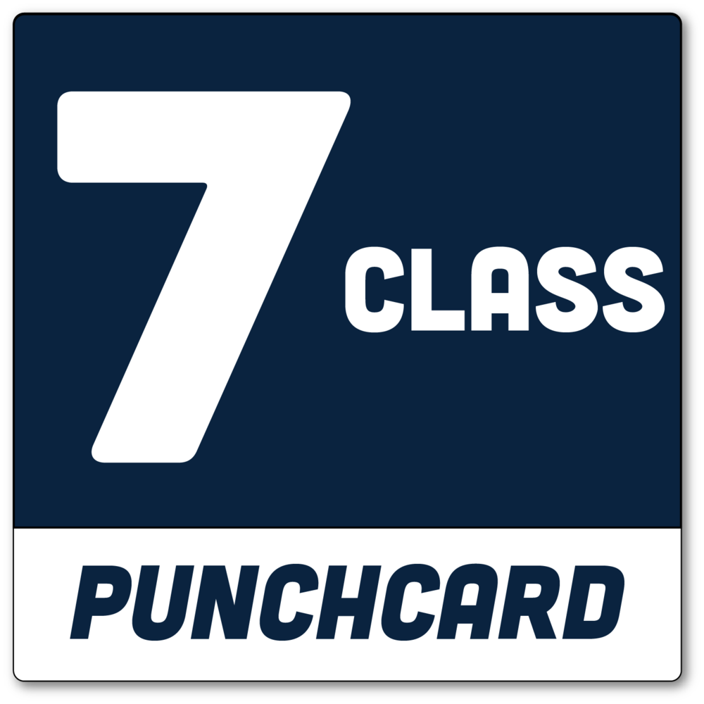 7-class-punchcard.png