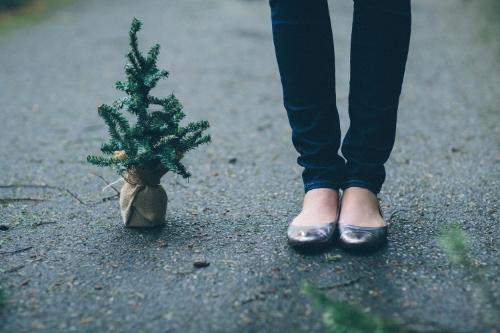 Karlie Rae / Holiday