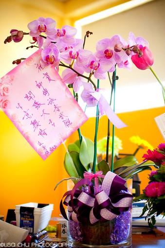 Gary Lam Wing Chun's Grand Opening 46.jpg