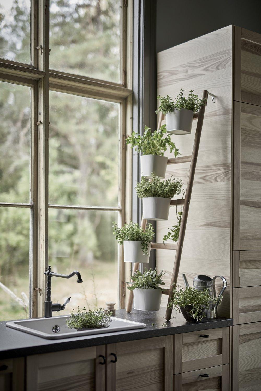 ikea-plant-stands-new-satsumas-2-gardenista.jpg