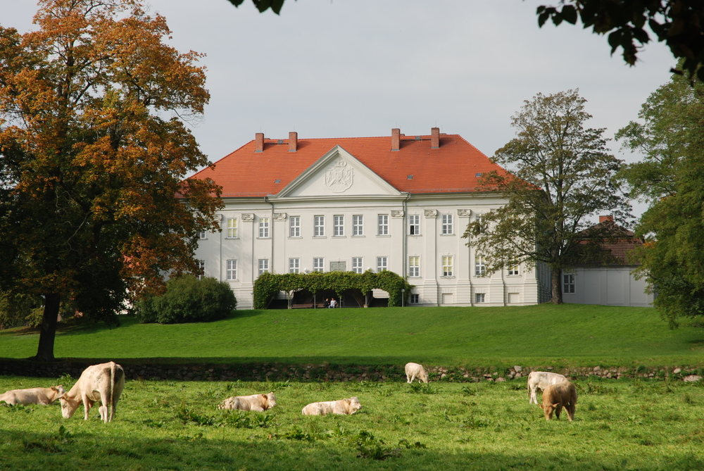 Parkseite Schloss Hohenzieritz © 2007, Foto: Ulrich Messner