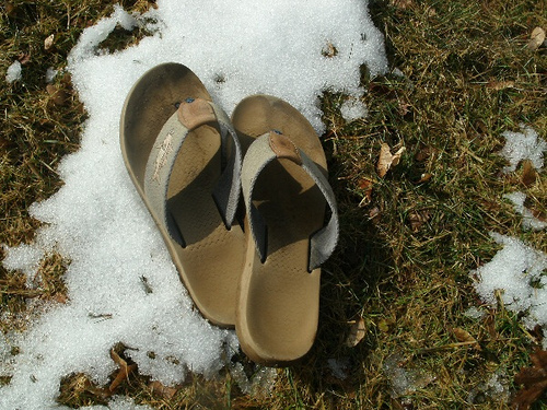 flip flops in winter - office pantry