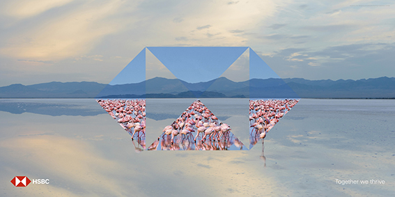 HSBC_Airports_Global_Thrive_Flamingos.jpg
