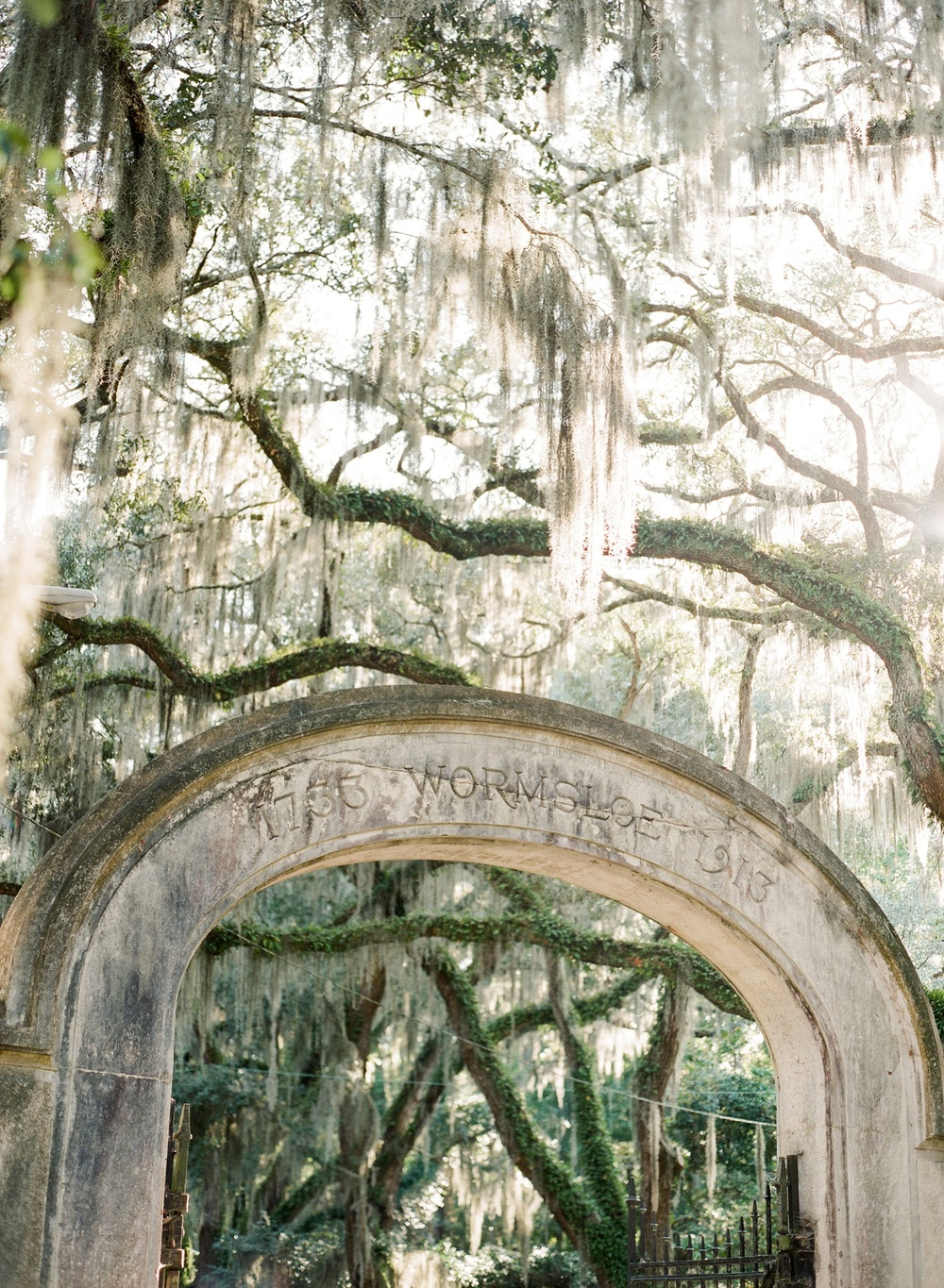 Savannah Engagement at Wormsloe by The Happy Bloom Fine Art Photography_0001.jpg