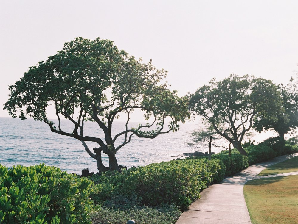 Hawaii-Big-Island-Wedding-Photographer_0001.jpg