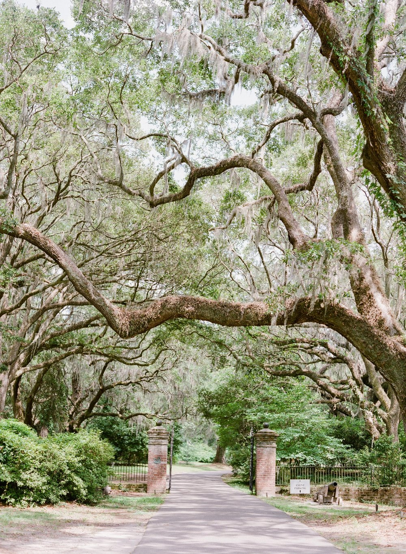 Charleston-Wedding-Legare-Waring-House_0041.jpg