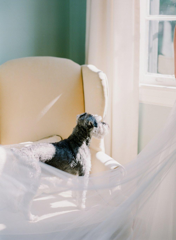 Charleston-Wedding-Legare-Waring-House_0049.jpg