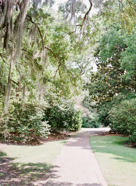 Charleston-Wedding-Photographer-Film.jpg