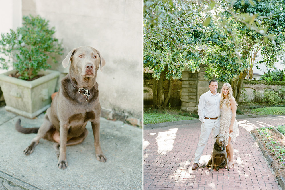 Charleston-Engagement-Photos-With-Puppy.jpg