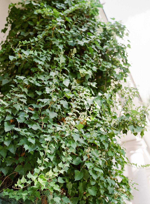 Charleston-Wedding-Photographer-The-Cedar-Room-25.jpg