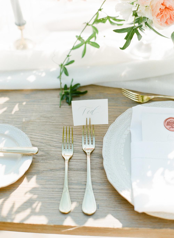 Charleston-Wedding-Legare-Waring-House-57.jpg