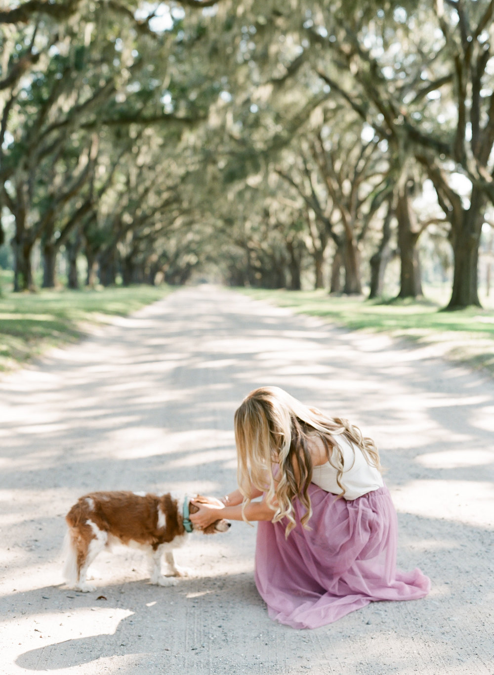 Wormsloe-Savannah-Engagement-Photos-4.jpg