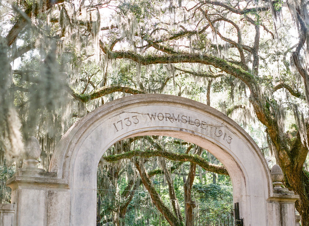 Wormsloe-Savannah-Engagement-Photos-6.jpg