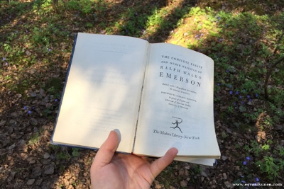 Going out to nature and reading is a great way to get inspired.