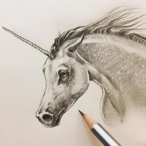 Unicorn_EevaNikunen.jpg