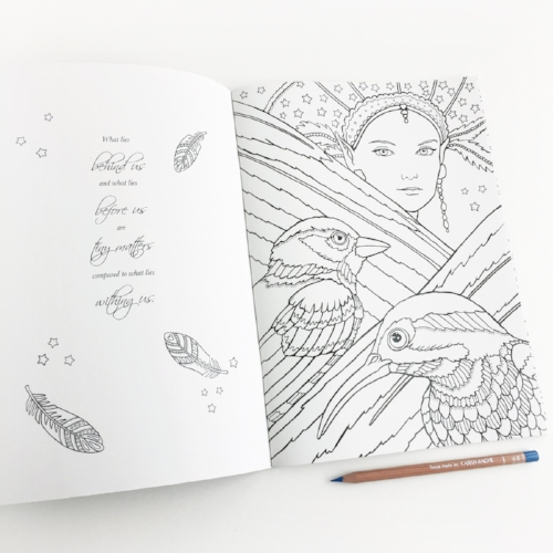 Stargazers_ColoringBook_EevaNikunen4.jpg
